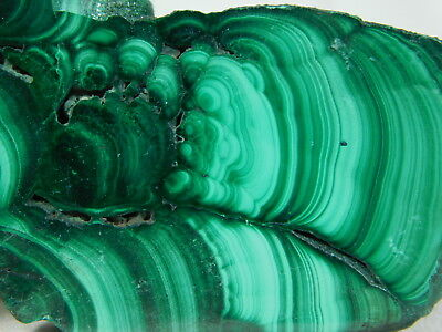 A Super Neat! Pattern on This Deep Green MALACHITE Slice or Slab! 23.8gr e