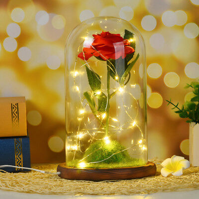Beauty and The Beast Red Rose Glass Lamp Dome Valentine LED Lighted Gift Girls
