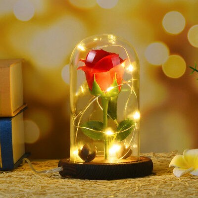 Beauty and the Beast Enchanted LED Red Rose in Glass Dome Best Gift