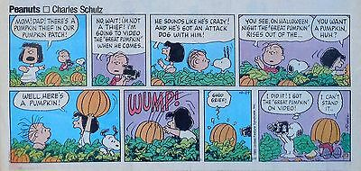 Peanuts by Charles Schulz - lot of 23 color Sunday comic pages from late 1989