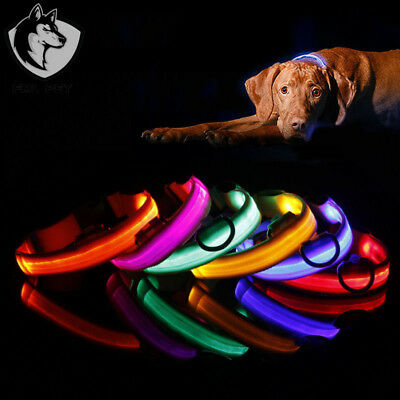 2018 Adjuatable LED Dog Cat Pet Collar Night Safety Bright Flashing Necklace Hot