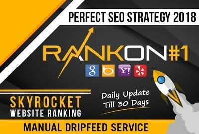 Rank on Google 1st page by exclusive Link Pyramid, Unique Domain