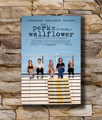 New The Perks of Being a Wallflower Movie Custom Poster Print Art Decor T-394
