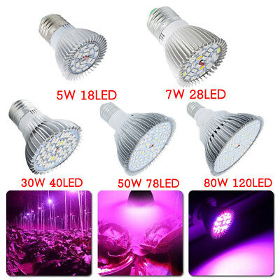 E27 SMD 5730 5-80 W LED Light Growing Plant Seed  Spectrum Hydroponic Bulb Lamp