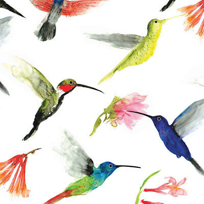 Hummingbirds Print Tissue Paper Multi Listing 500x750mm