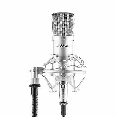 Professionelles Studio Kondensatormikrofon Microphone Podcast Streaming silber