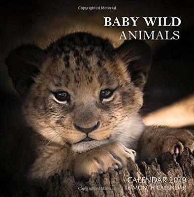 NEW Baby Wild Animals Calendar 2019: 16 Month Calendar by Mason Landon