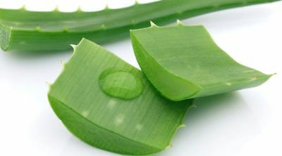 Aloe Vera Gel In Leaf Form 100G. Pure, Fast Delivery.
