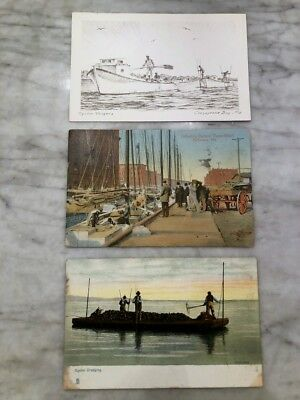LOT of 3 Antique Oyster Postcards Maryland Baltimore Chesapeake Bay Early 1900's
