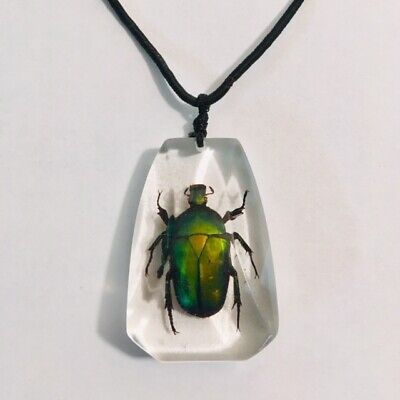 Resin Cast Scarab Beetle Pendant