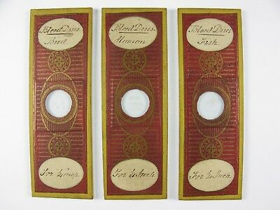 3 x Antique Microscope Slides by C.M.Topping. Blood Discs. Bird/Human/Fish.