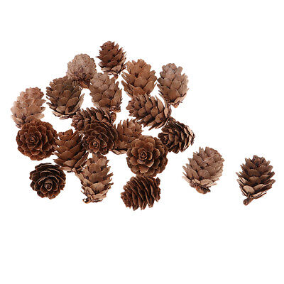 60Pcs Natural Dried Pine Cones Party Favor Wedding Decor Home Embellishments