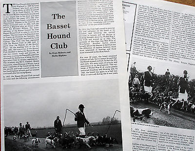 BASSET HOUND DOG BREED KENNEL CLIPPINGS 80s-00s inc History of Basset Club  x 40