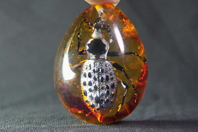 China Handwork Decoration Exquisite Amber Inlay Vivid Rare Insects Noble Pendant