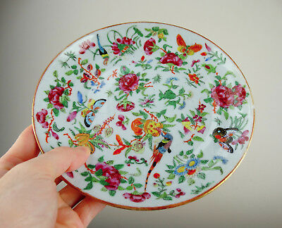 Antique Chinese Porcelain Plate Famille Rose Celadon Canton Export 19th Century