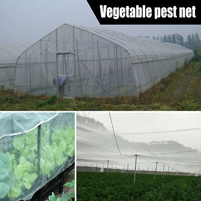 Insect Animal Garden Bird Net Netting Vegetables Pest Plant Crops Protect Mesh