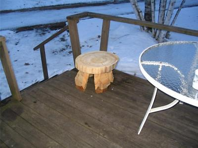 Log Table Nightstand Stool Chainsaw Carving DIYF Do It Yourself Finish Project
