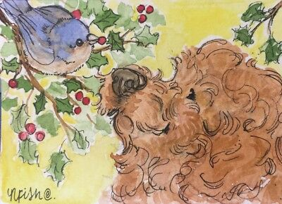 ACEO Goldendoodle, Cockerpoo, Holiday Winter Bird. Orgl Waterclr Art By NFISH