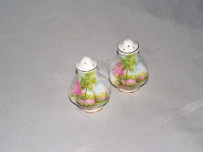 Antique Porcelain With Flowers & Trees Salt And Pepper Shakers