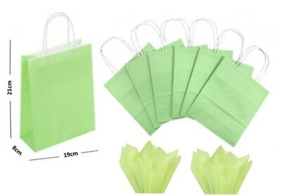 Pastel Green Paper Gift Bags BB Twisted Handles / Party Loot Favour Bag & Tissue