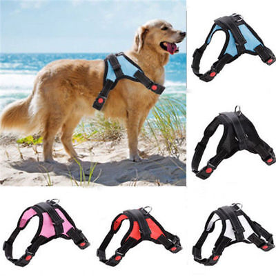 New Soft Pet Control Harness Purple Mesh Small Dog Cat Walk Collar Safety Strap