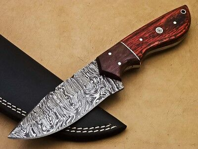Rody Stan HAND MADE DAMASCUS STEEL FULL TANG KNIFE - HARD WOOD - SM-3618