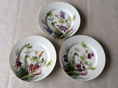 A Set Of Three Continental Hand Painted Flower Design Plates