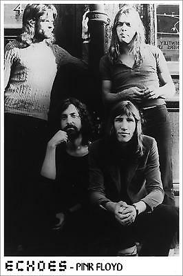 """Pink Floyd Echoes Poster Free US Shipping Approx 24"""" x 36"""""""