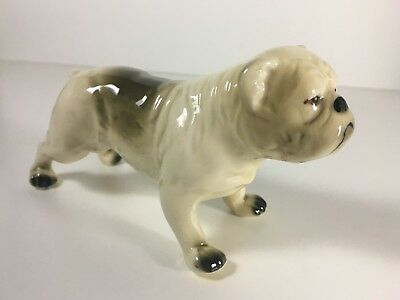 Antique Porcelain Bulldog Figurine - Gift from Belgium 1950's - Made in Germany