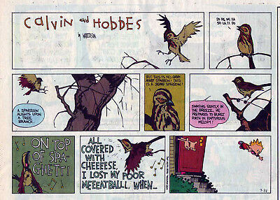 Calvin and Hobbes by Bill Watterson - color Sunday comic page - July 31, 1994