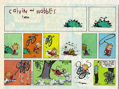 Calvin and Hobbes by Bill Watterson - color Sunday comic page - August 28, 1994