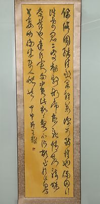 Long Rare Chinese Hand Writing Calligraphy Characters Old Scroll Painting YY02