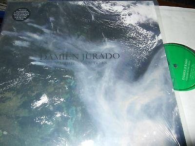 Damien Jurado : Caught In The Trees Lp 2008 Secretly Canadian Usa