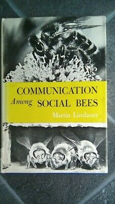 Lindauer, bee communication, bees, beekeeping