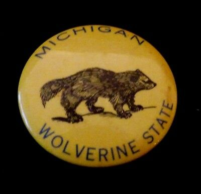 VTG  Early 50s MICHIGAN WOLVERINE STATE 2.25 Celluloid Pinback Button