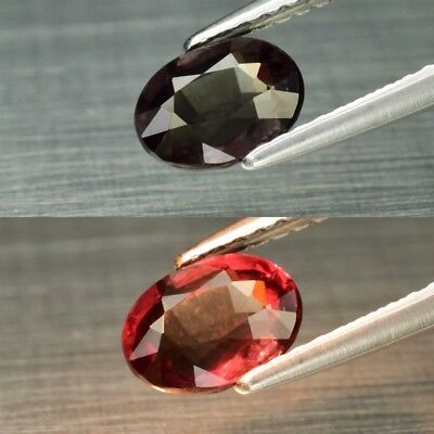 Rare! 1.34ct 7x5.2mm Oval Natural Unheated Color Change Garnet, Africa