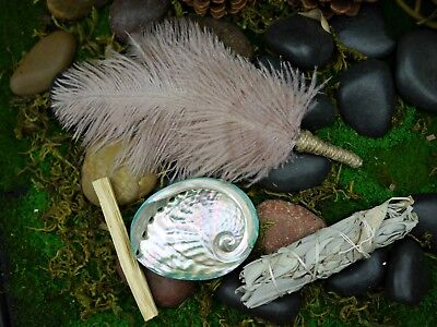 Smudging Kit  Feather Wand  Shell 8.5cm White Sage, Palo Santo Smudge