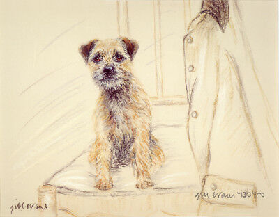 BORDER TERRIER DOG LIMITED EDITION PRINT - Signed Artist Proof - Numbered 62/85