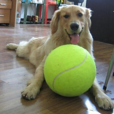 6.5cm Dog Toys Large Tennis Ball For Pet Chew Toy Big Inflatable Launcher