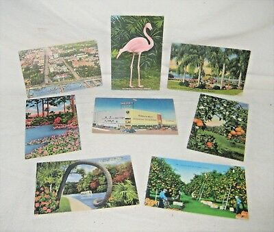 Lot of 8 Vintage Postcards From the 1940s - 1950s - Florida - Flamingo