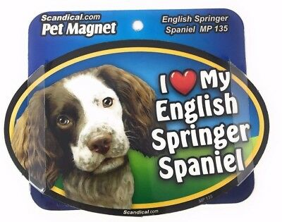 I LOVE MY ENGLISH SPRINGER SPANIEL  Magnet Gifts, Cars, Trucks. Lockers