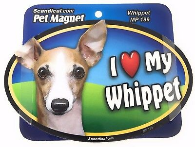 I LOVE MY WHIPPET DOG Magnet Gifts, Cars,Trucks. Lockers, Refrigerator
