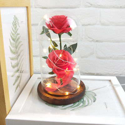 Beauty And The Beast Enchanted Rose Glass LED Lighted Wedding Home Decor Gift KZ