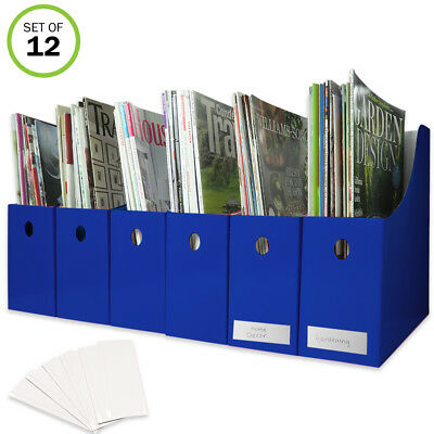 Evelots Magazine File Holder-Organizer-Full 4 Inch Wide-Blue-With Labels