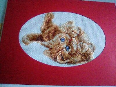 Newly Completed Cross Stitched Card 8 X 6 Inches...playful Kitten