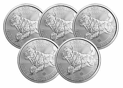 Lot of 5 - 2018 $5 1oz Silver Canadian Wolf .9999 BU