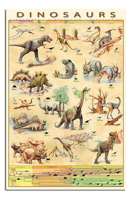 Dinosaurs Educational Poster New
