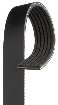 NAPA AUTOMOTIVE 25-060810 Replacement Belt