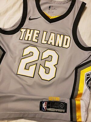 b1bc4a7b Lebron James 2017-18 Cleveland Cavaliers Nike City Ed The Land Authentic  Jersey