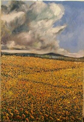 "Impressionism Oil Fine Art. Storm cloud. Original. Ducuron artist 23""x17"".Canvas"